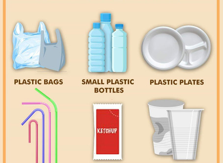 Lets Know about Plastic Ban in India