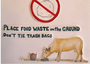 Image Source: https://www.prakritifoundation.in/cows-eating-plastic/