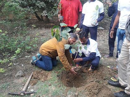 Peepal Baba during plantation.jpg