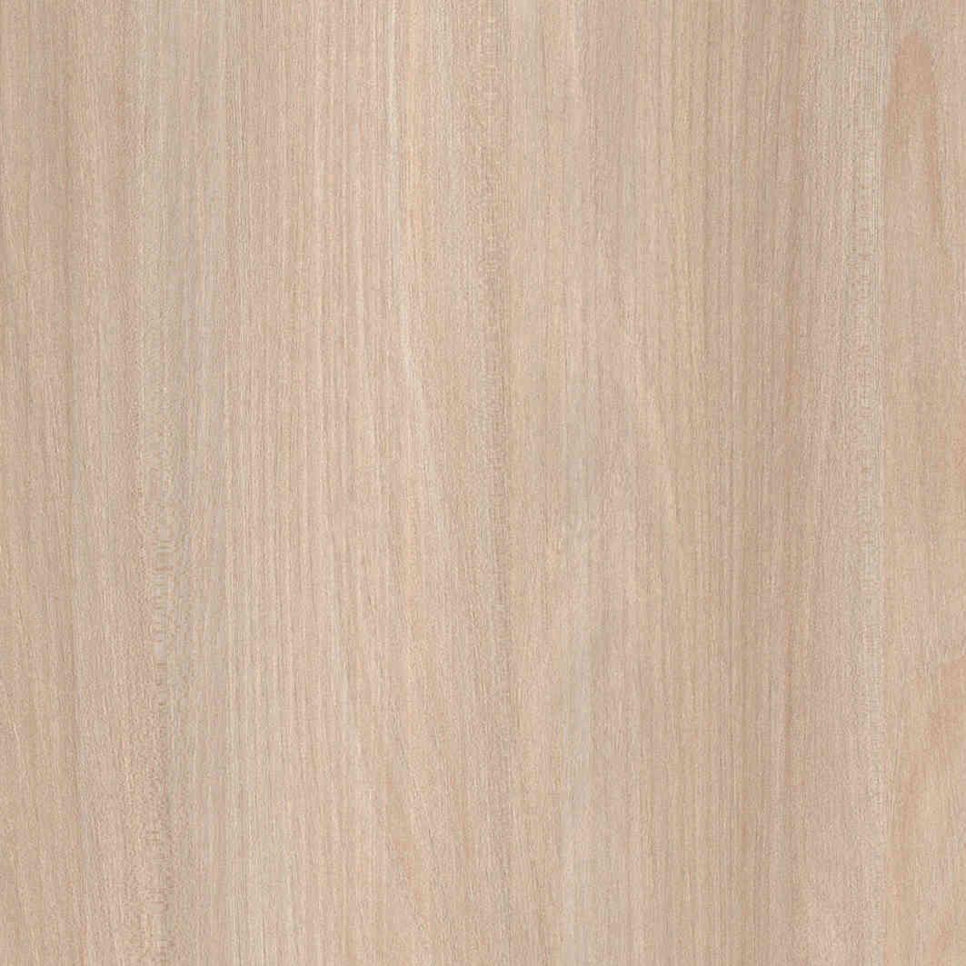 C16-2 Warm Oiled Ash