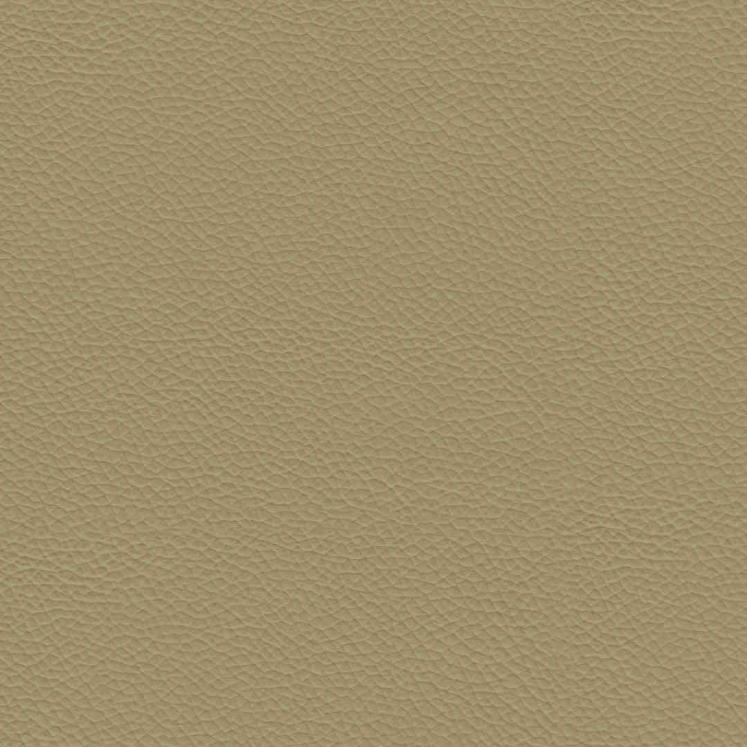 ECP04 Beige Synthetic Leather