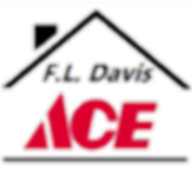 2019 Ace Logotransparent2.png