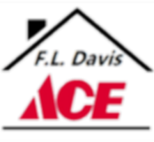 2019 Ace Logotransparent2.png