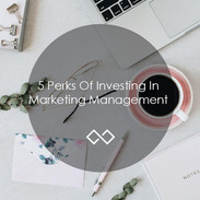 5-Perks-Of-Investing-In-Marketing-Manage