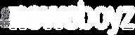 Newsboyz-2019-logo---white.png