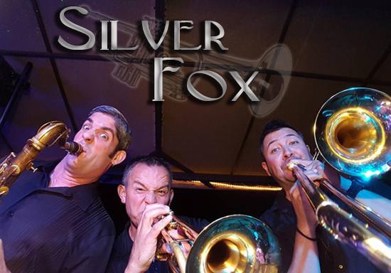 SilverFox.jpg
