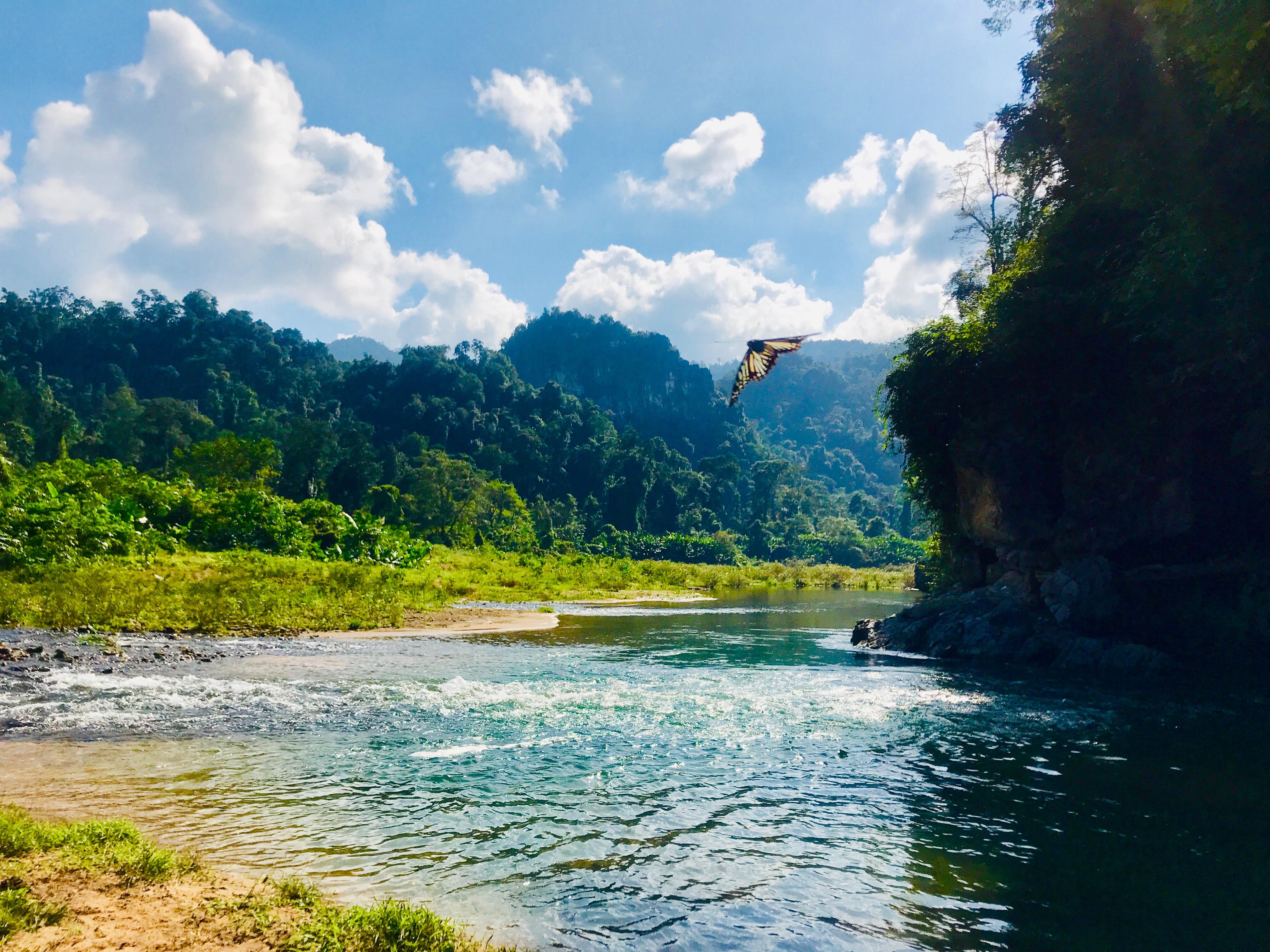 Phong Nha-Kẻ Bàng, Vietnam