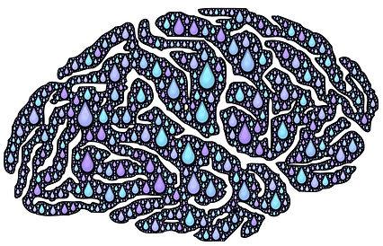 brain-962650_1280[1].jpg