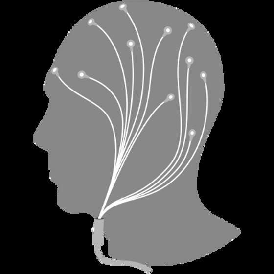 EEG & ECG