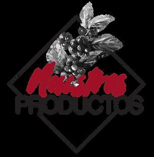 NUESTROS PRODUCTOS-03.png