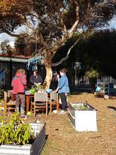 Vibrant Veggies - Outdoor Cooking
