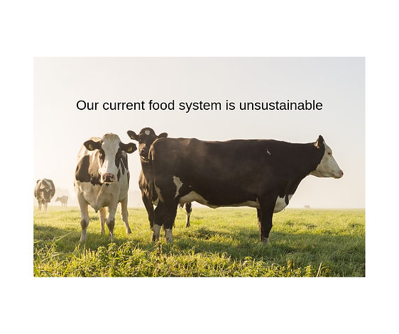 Our current food system is unsustainable