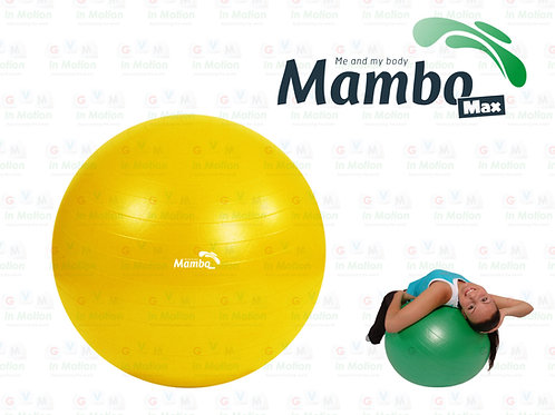 Mambo Max AB Gym Ball | Faster Blaster Pump