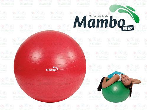 Mambo Max AB Gym Ball   Polybag