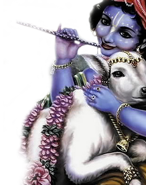 krishna-with-cow.png