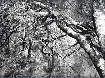 pin planchez tirage II sur X noir web.jp