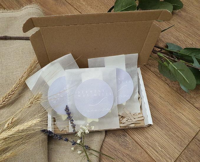 Sample Boxes- Wax Melts