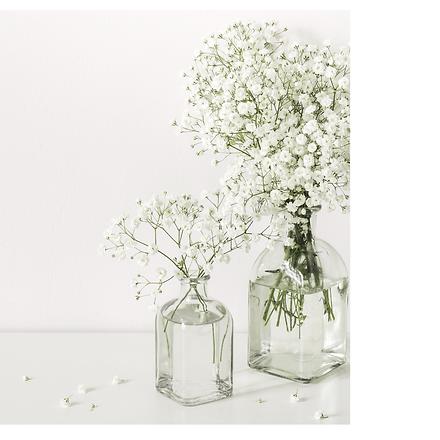 Gyposophila in glass vase