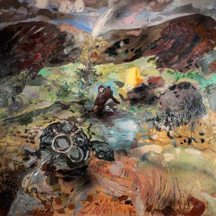 Wreckage of Carnedd Llewellyn
