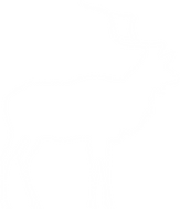 128-1288228_collection-of-deer-head-silh