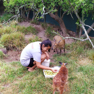 Thayanne feeding sansa.jpg