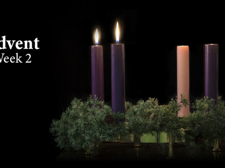 Collect, Readings & Sermon for December 8th, 2019