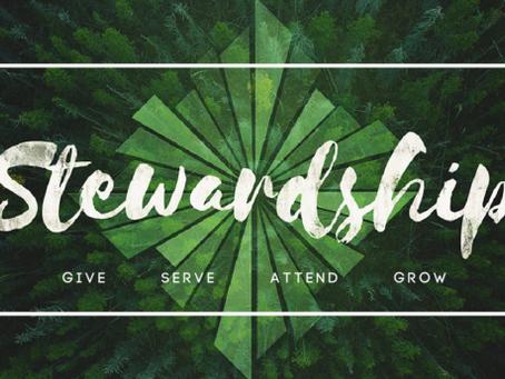 Stewardship: Patricia