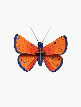Studio ROOF Small Insects | Copper Butterfly