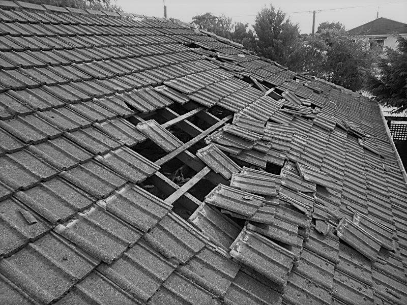 Roof assessment/ estimate visit