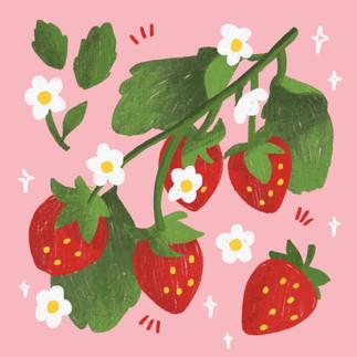 british fruit illustration