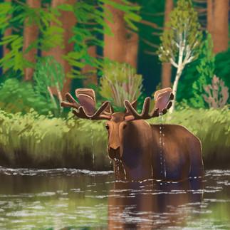 moose_scape.jpg