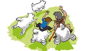 17-mouton-rodeo.jpg