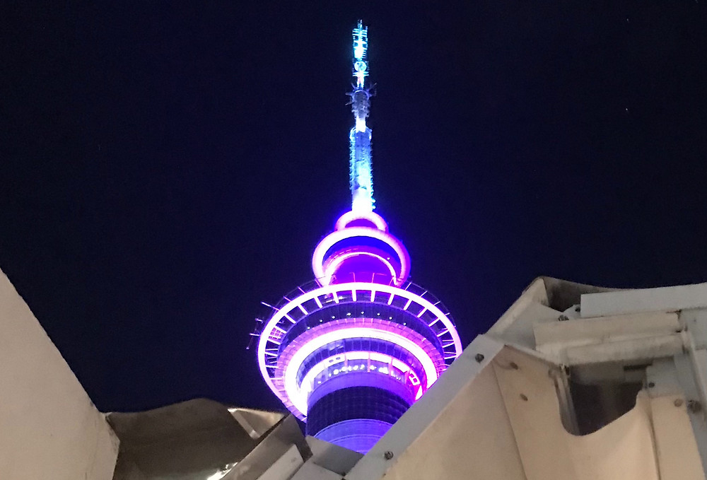 Illuminated Sky Tower at night