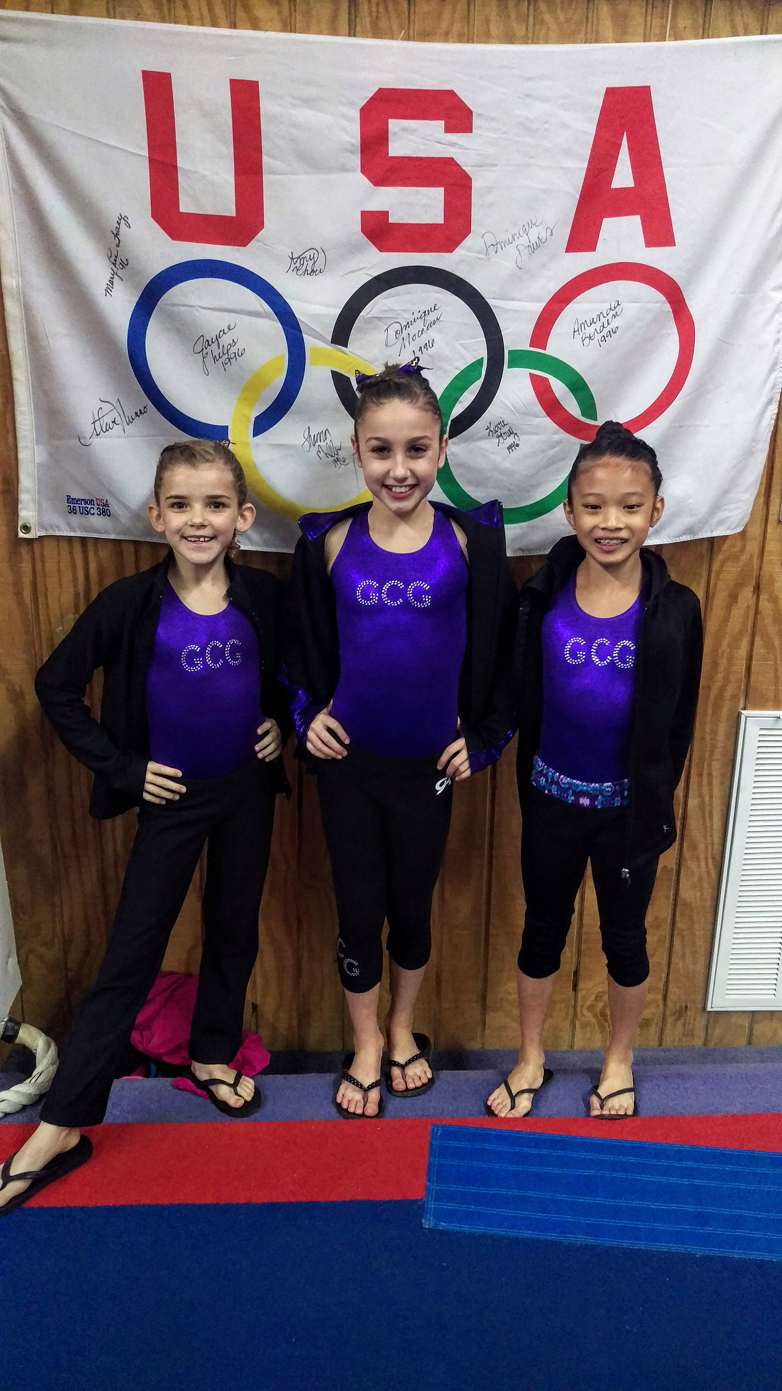 gasparilla gymnastics meet 2015 results