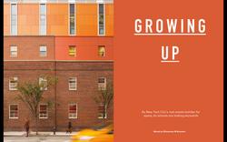 vertical-schools-nyc-icon-magazine