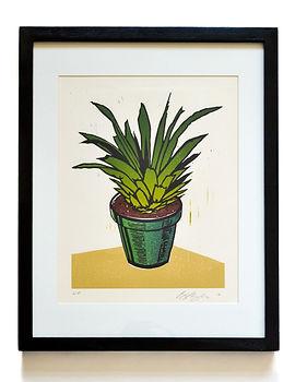 Pineapple (present).jpg