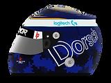 Dorsch_2020.png