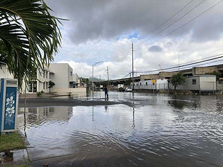 King Tide Photos for pop up boards3.jpg