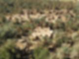 pa280253.jpg