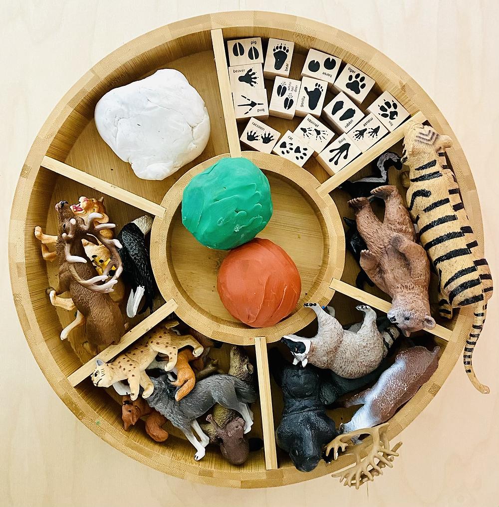 Play dough kit animal tracks