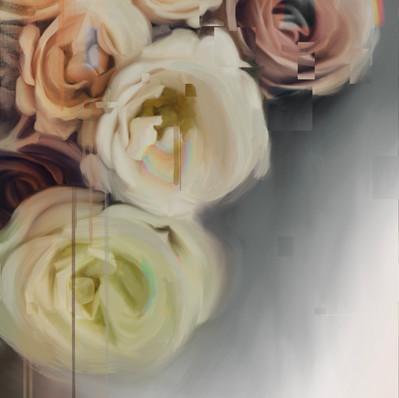 Bloom no.3