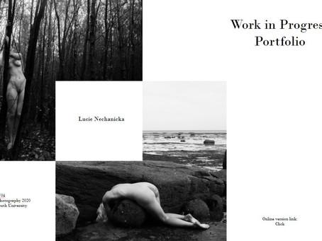 Week 11: Work in Progress Portfolio