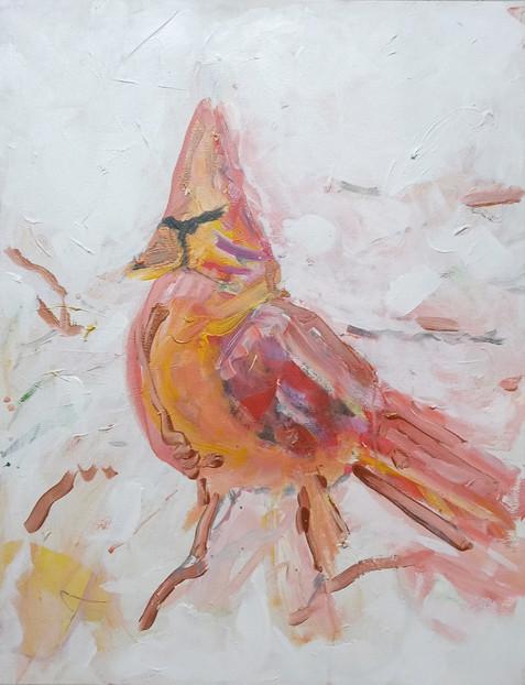 WINTER BIRD 1
