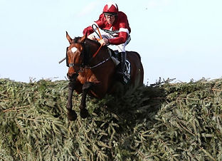 Tiger Roll Grand National.jpg