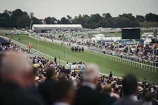 Epsom Derby Horses Racing.jpg