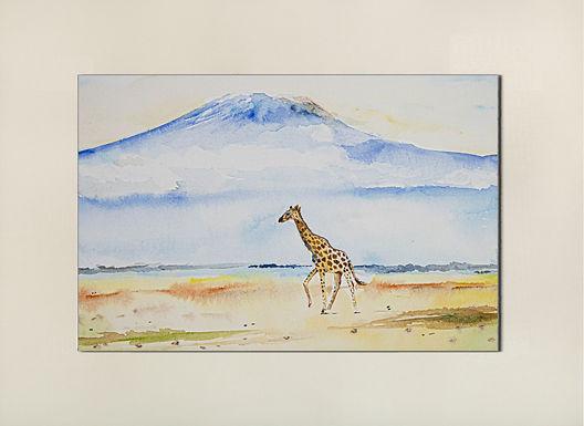 The lone Giraffe