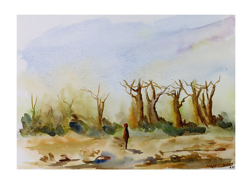 Durch den Baobabwald