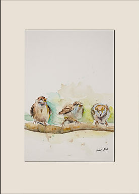 Three little birds singing sweet songs