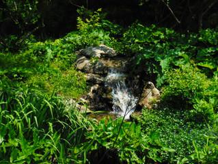 Mill Creek Eco-Pond Fountain
