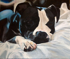 Adult art classes, Carlsbad Art school, Acrylic on canvas, Dog painting